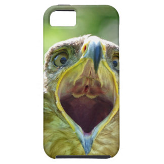 Steppe Eagle Head 004 01rd, screaming iPhone 5 Cover