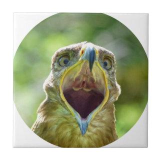 Steppe Eagle Head 004 01rd, screaming Tile
