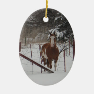Stepper In The Snow Ornament