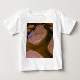 Stepping Stones Baby T-Shirt