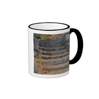 Steps covered in pine needles, White Mountain Ringer Coffee Mug