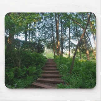 Steps on a Nature Walk Mouse Pad