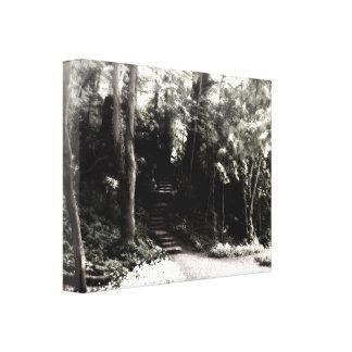 Steps to Enchantment I Canvas Print