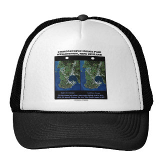Stereoscopic Image Pair Wellington New Zealand Trucker Hats