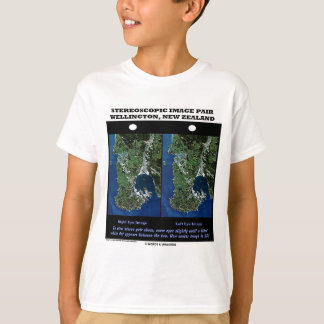 Stereoscopic Image Pair Wellington New Zealand Shirt