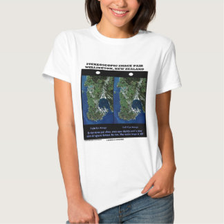 Stereoscopic Image Pair Wellington New Zealand T-Shirt