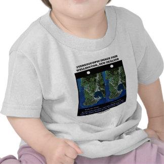 Stereoscopic Image Pair Wellington New Zealand Tee Shirts