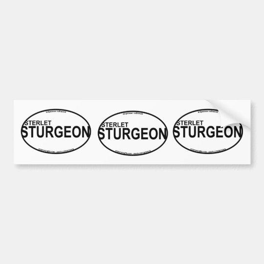 Sterlet Sturgeon Euro Stickers