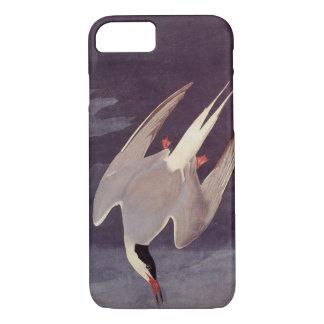 Sterne arctique par John James Audubon, oiseaux Coque iPhone 7