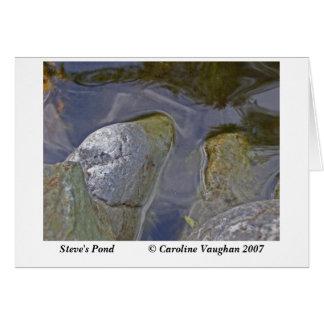 Steve's pond moss, Steve's Pond       ... Card