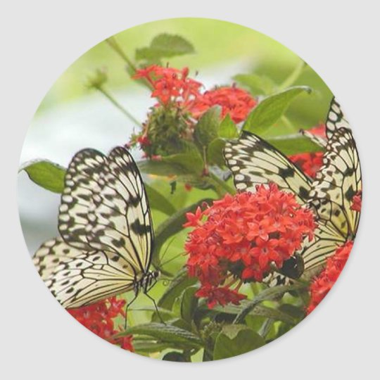 Sticker - Butterflies & Blossoms