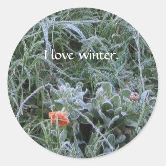 Sticker: Frost-Kissed Calendula Flower Round Sticker