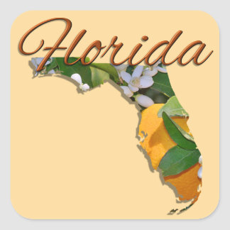 Stickers - FLORIDA
