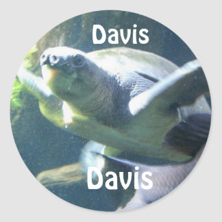 stickers for name Davis