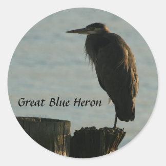 Stickers:  Great Blue Heron Round Sticker