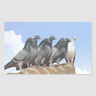 Stickers of carrier pigeons on the tile roof