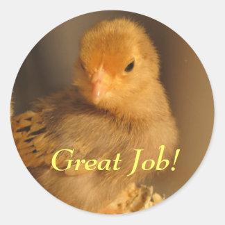 Stickers--Orange Chick Classic Round Sticker