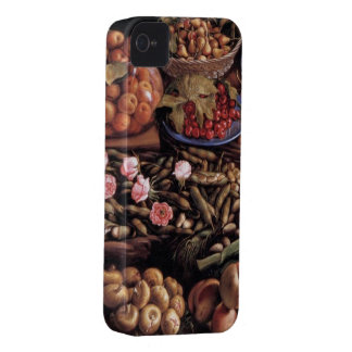 Still Life by Vincenzo Campi iPhone 4 Cases