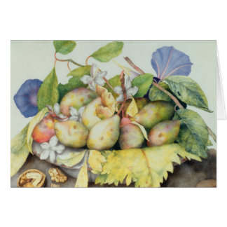 Still life with Plums, Walnuts and Jasmine (w/c on Card