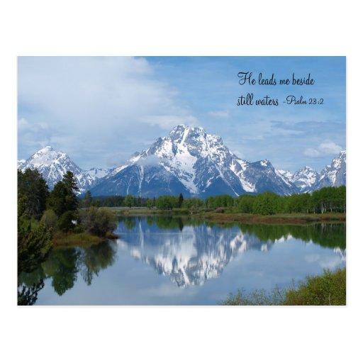 Still Waters Postcard