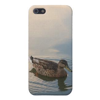 """Stillness"" iPhone 5 Case"