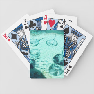 Sting rays in Xcaret - Mexico Bicycle Playing Cards