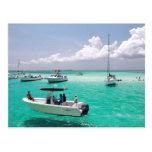 Stingray City Grand Cayman Islands Postcard