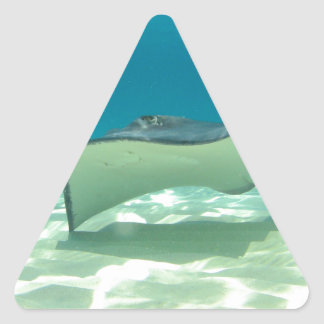 Stingray Triangle Sticker