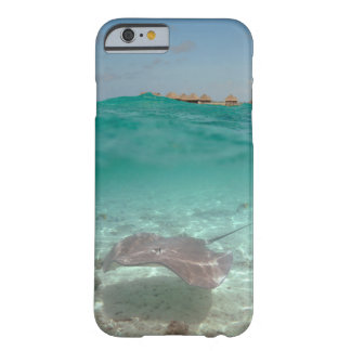 Stingray underwater in Bora Bora iPhone case