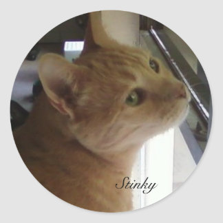Stinky in his famous pose round sticker