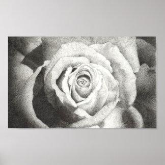 Stippled Rose Poster