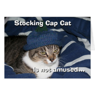 Stocking cap cat is not amused card