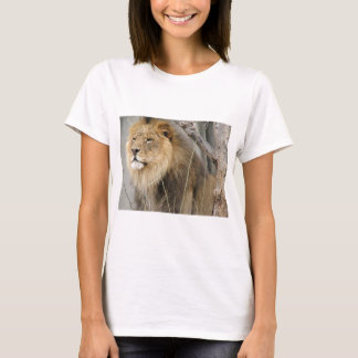Stoic Lion Looking Off into the Distance T-Shirt