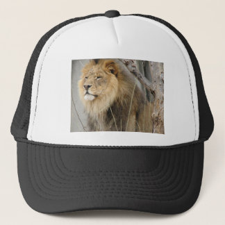 Stoic Lion Looking Off into the Distance Trucker Hat