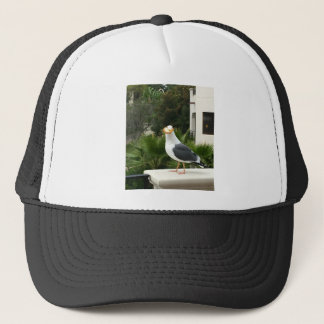 STOLEN LUNCH TRUCKER HAT