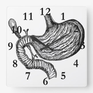 stomach drawing clock
