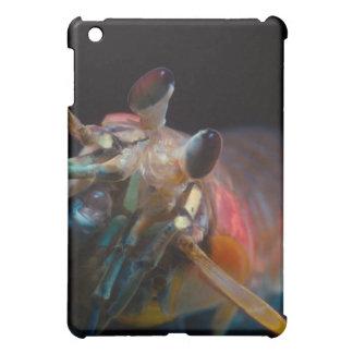 Stomatopod (Mantis Shrimp) iPad Mini Cases