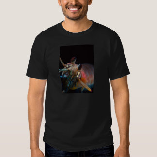 Stomatopod (Mantis Shrimp) Tshirts