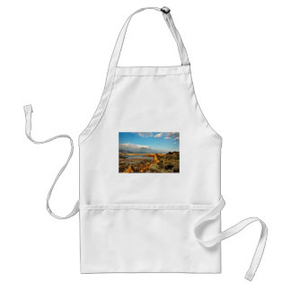 Stone beach on the island Pag in Croatia Standard Apron