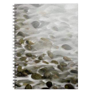 Stone Beach | Point Lobos State Reserve, CA Notebook