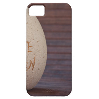 Stone iPhone 5 Cover