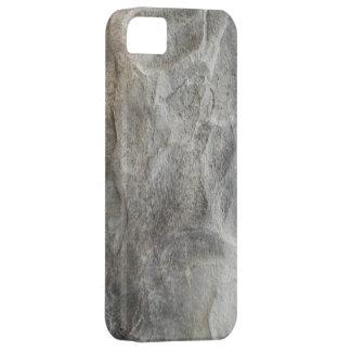 Stone Rock iPhone 5 Cases