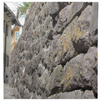 Stone wall perspective printed napkin