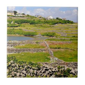Stone Walls of Ireland Tile