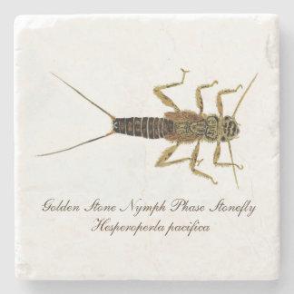 Stonefly Nymph Coaster