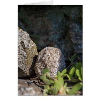 Stones | Desert Rose Series 105 Card