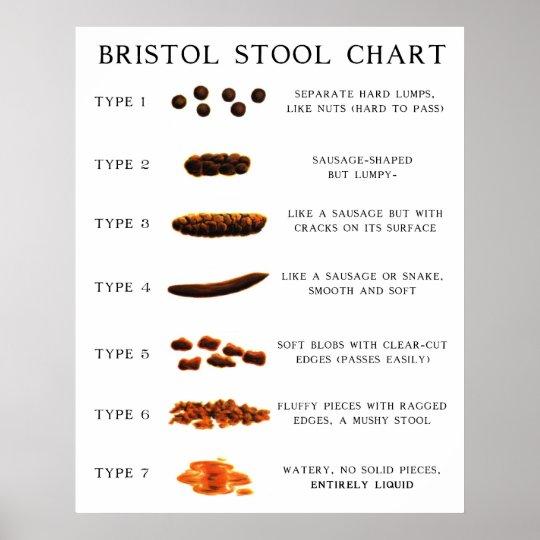 Stool Chart Zazzle Ca