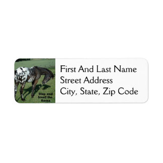 Stop and Smell the Roses Appaloosa Horse Photo Return Address Label