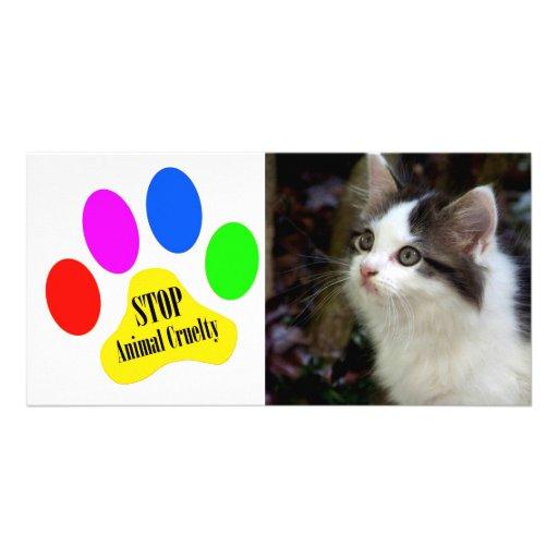 Stop Animal Cruelty Pet Photo Card