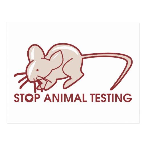 Stop Animal Testing Post Cards